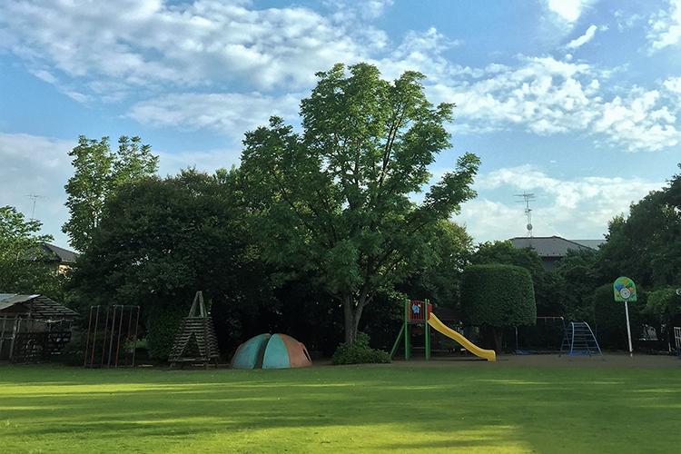 くりのみ自然幼稚園